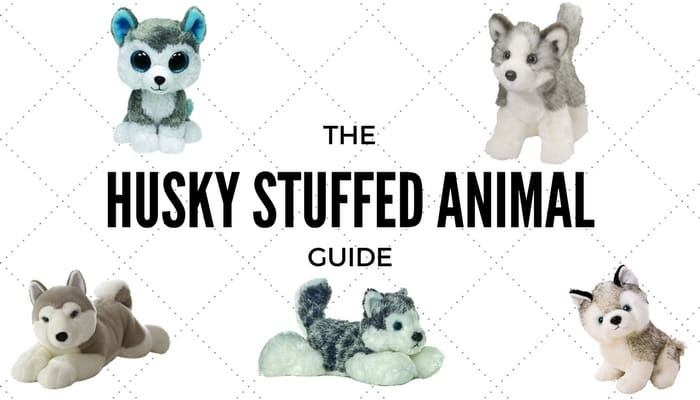 The Husky Stuffed Animal Guide  90670a91a258