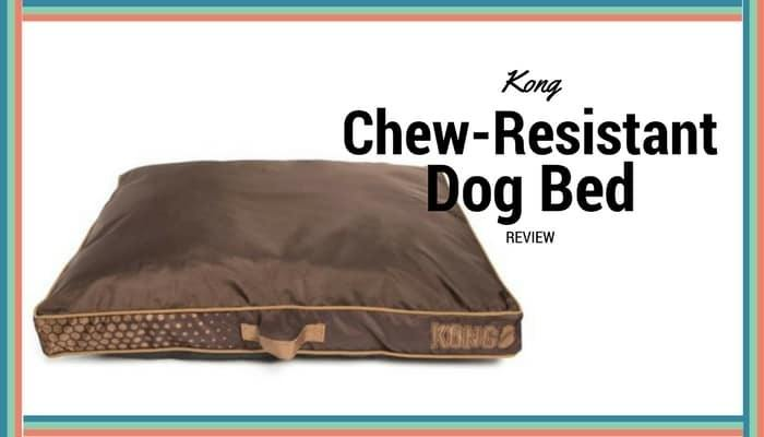 petco travel and product dog bed gray productdetail en petcostore kandh suv h k large center kong shop